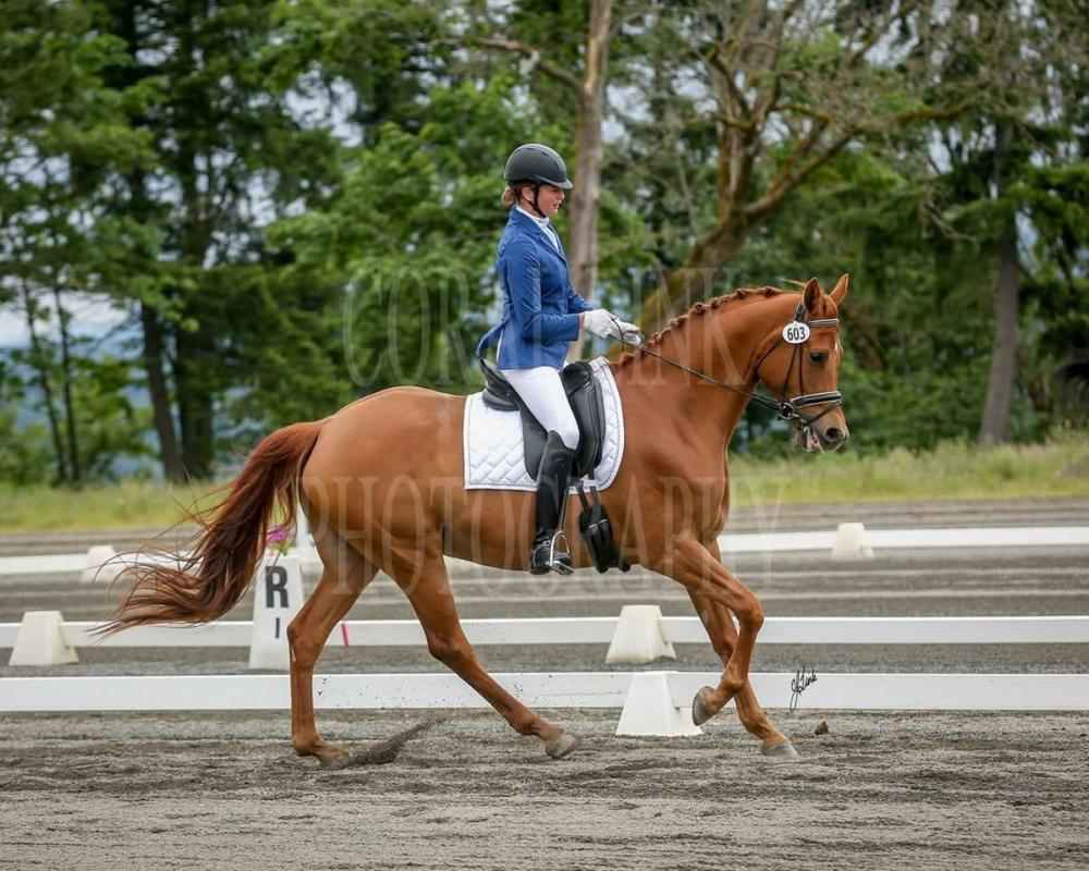 First level canter