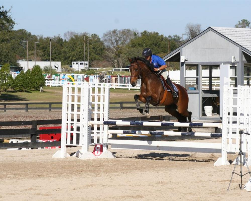 Her horse and zeena Ethan Frome